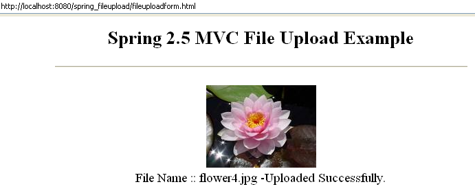 Mvc File Download Example