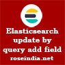 Elasticsearch update by query add field