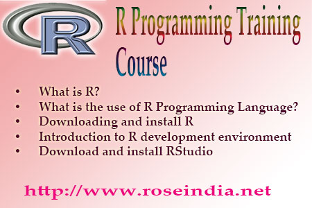 R Programming Training Course